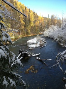 Snow, Season, Quartz, Creek